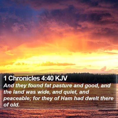 1 Chronicles 4:40 KJV Bible Verse Image