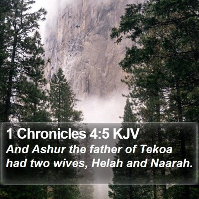 1 Chronicles 4:5 KJV Bible Verse Image