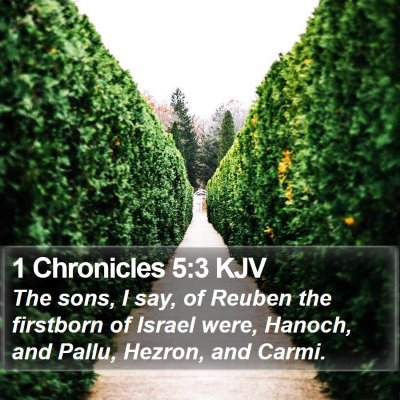 1 Chronicles 5:3 KJV Bible Verse Image