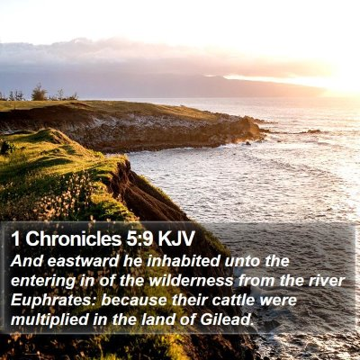 1 Chronicles 5:9 KJV Bible Verse Image