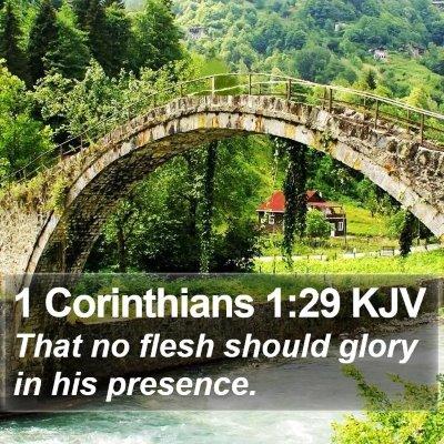 1 Corinthians 1:29 KJV Bible Verse Image