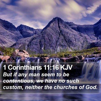 1 Corinthians 11:16 KJV Bible Verse Image