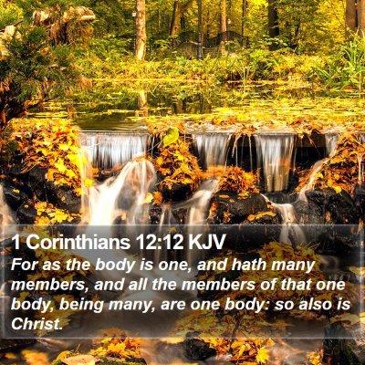 1 Corinthians 12:12 KJV Bible Verse Image