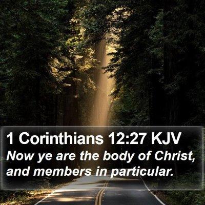1 Corinthians 12:27 KJV Bible Verse Image