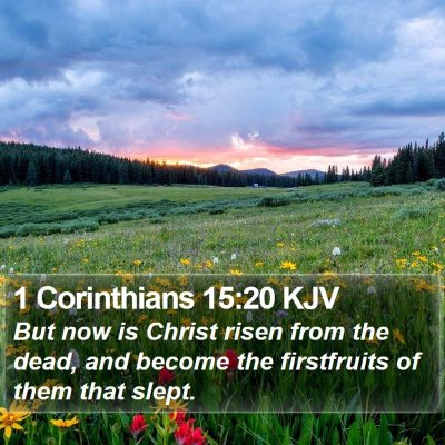 1 Corinthians 15:20 KJV Bible Verse Image