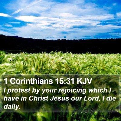 1 Corinthians 15:31 KJV Bible Verse Image