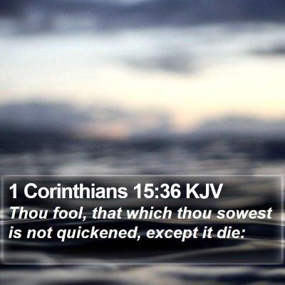 1 Corinthians 15:36 KJV Bible Verse Image