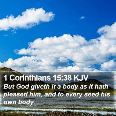 1 Corinthians 15:38 KJV Bible Verse Image