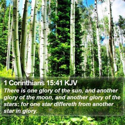 1 Corinthians 15:41 KJV Bible Verse Image