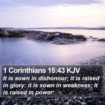 1 Corinthians 15:43 KJV Bible Verse Image