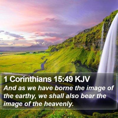 1 Corinthians 15:49 KJV Bible Verse Image