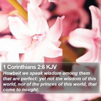 1 Corinthians 2:6 KJV Bible Verse Image