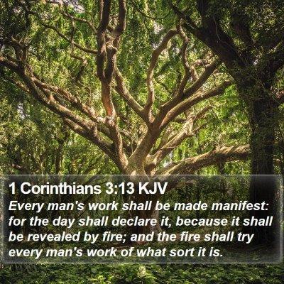 1 Corinthians 3:13 KJV Bible Verse Image