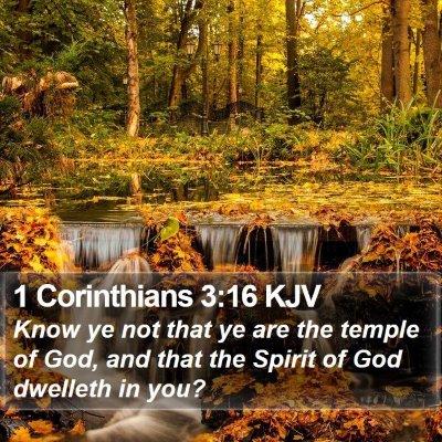 1 Corinthians 3:16 KJV Bible Verse Image