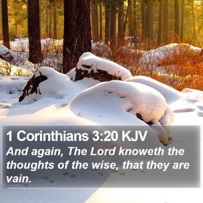 1 Corinthians 3:20 KJV Bible Verse Image