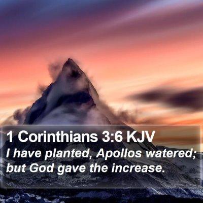 1 Corinthians 3:6 KJV Bible Verse Image
