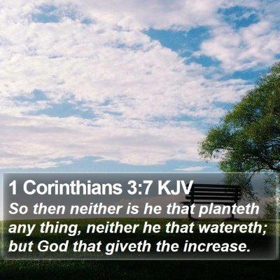 1 Corinthians 3:7 KJV Bible Verse Image