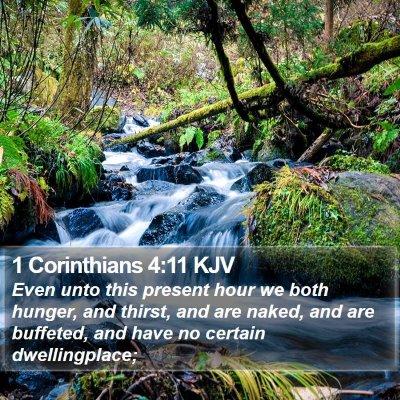 1 Corinthians 4:11 KJV Bible Verse Image