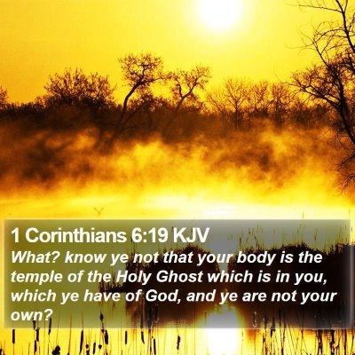 1 Corinthians 6:19 KJV Bible Verse Image