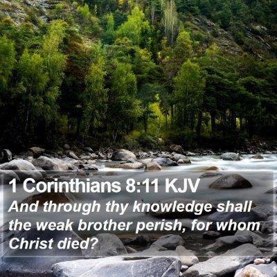 1 Corinthians 8:11 KJV Bible Verse Image