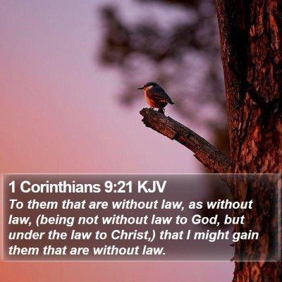1 Corinthians 9:21 KJV Bible Verse Image