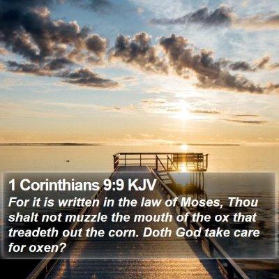 1 Corinthians 9:9 KJV Bible Verse Image