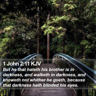 1 John 2:11 KJV Bible Verse Image