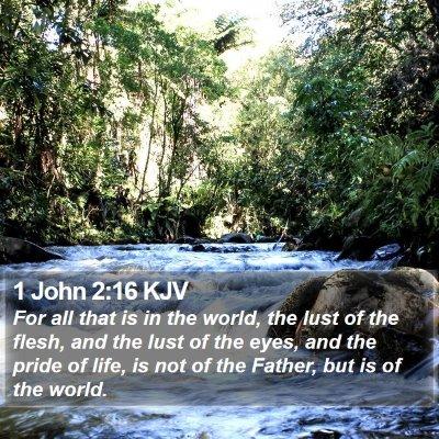 1 John 2:16 KJV Bible Verse Image