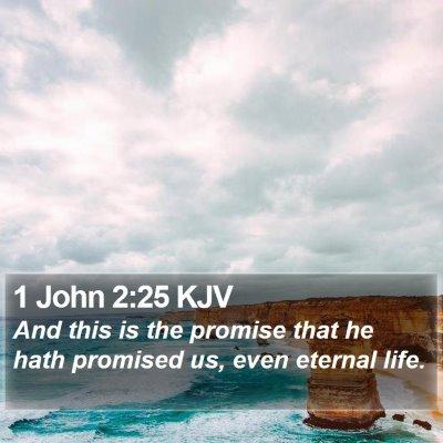 1 John 2:25 KJV Bible Verse Image