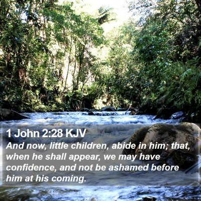 1 John 2:28 KJV Bible Verse Image