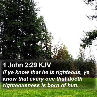 1 John 2:29 KJV Bible Verse Image