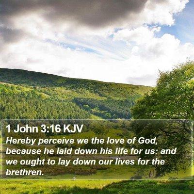 1 John 3:16 KJV Bible Verse Image