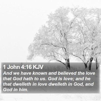 1 John 4:16 KJV Bible Verse Image