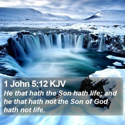 1 John 5:12 KJV Bible Verse Image