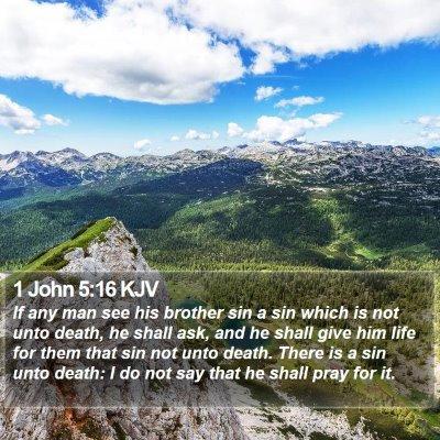1 John 5:16 KJV Bible Verse Image