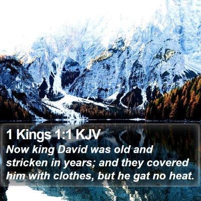 1 Kings 1:1 KJV Bible Verse Image