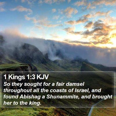 1 Kings 1:3 KJV Bible Verse Image