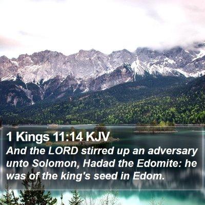 1 Kings 11:14 KJV Bible Verse Image