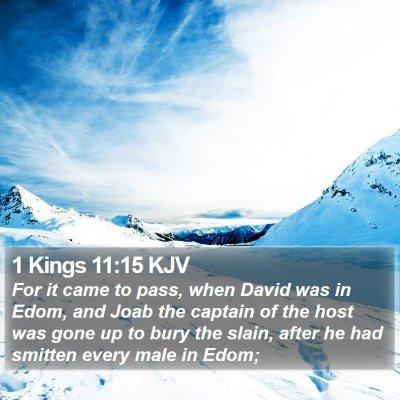1 Kings 11:15 KJV Bible Verse Image