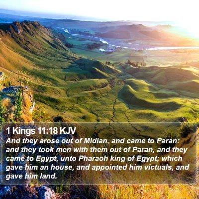 1 Kings 11:18 KJV Bible Verse Image