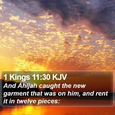 1 Kings 11:30 KJV Bible Verse Image