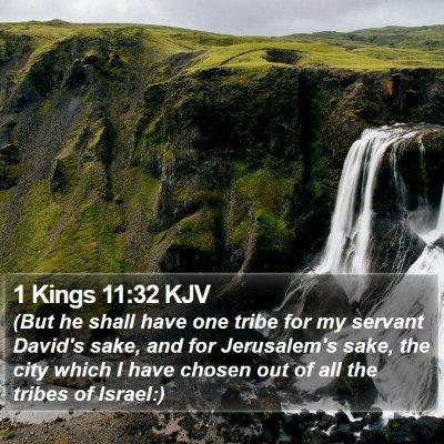 1 Kings 11:32 KJV Bible Verse Image