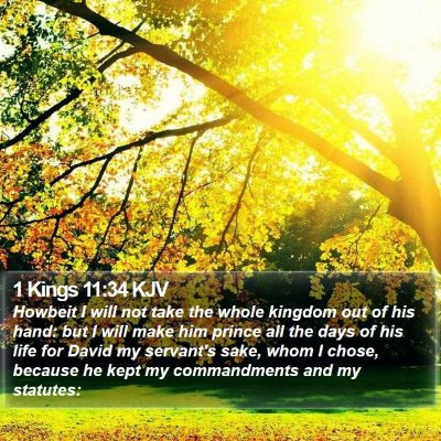1 Kings 11:34 KJV Bible Verse Image