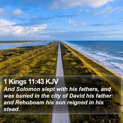 1 Kings 11:43 KJV Bible Verse Image