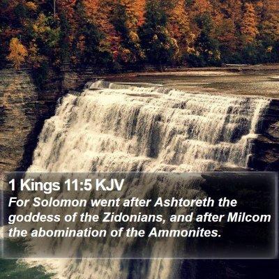 1 Kings 11:5 KJV Bible Verse Image