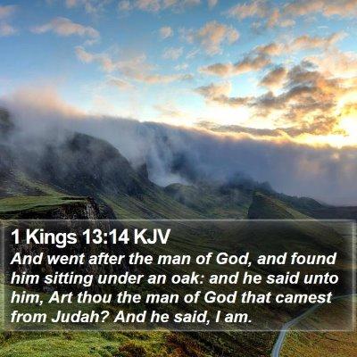 1 Kings 13:14 KJV Bible Verse Image