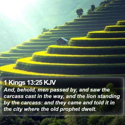 1 Kings 13:25 KJV Bible Verse Image