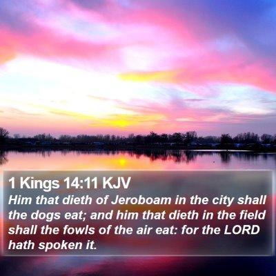 1 Kings 14:11 KJV Bible Verse Image