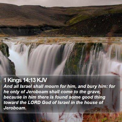 1 Kings 14:13 KJV Bible Verse Image