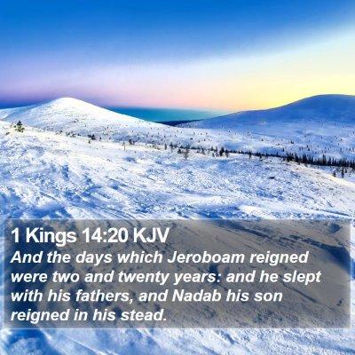 1 Kings 14:20 KJV Bible Verse Image